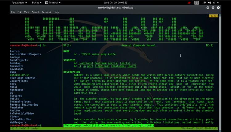 Tutoriale Video NetCat