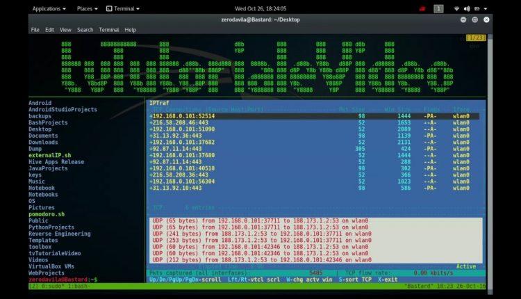 Cum monitorizam traficul din retea cu ajutorul iptraf pe Unix