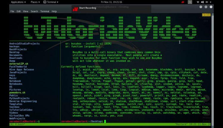 Tutoriale Video Busy Box -3- despre CHMOD,CHROOT, CHVT, CLEAR,CMP,CP si CPIO