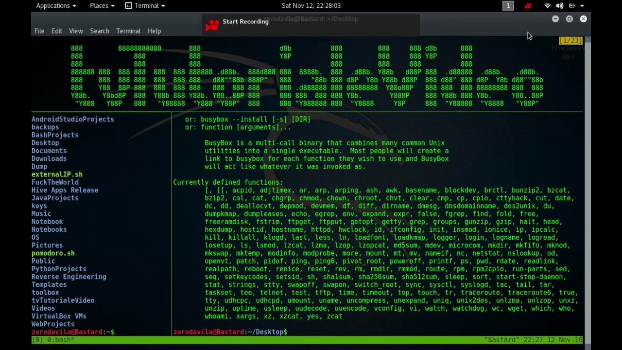 Tutoriale Video Busybox -16- despre pwd,rdate,readlink, realpath, reboot, renice, reset si rev