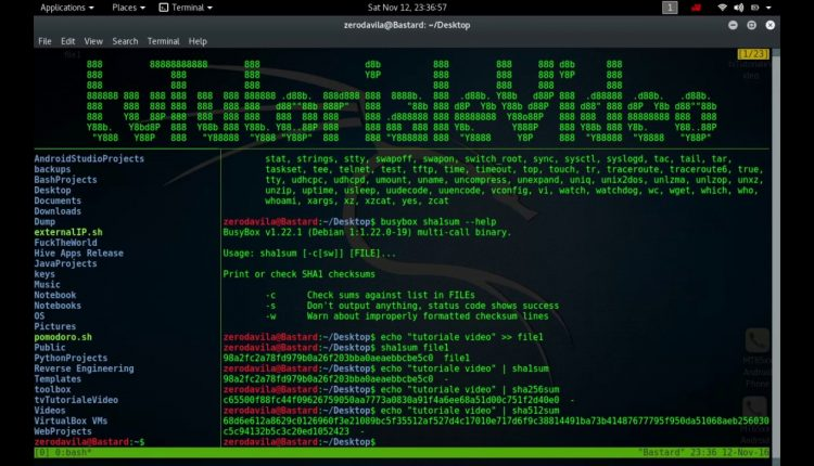 Tutoriale video BusyBox -18- despre seq, setkeycodes, setsid, sh, sleap, sort si start-stop daemon