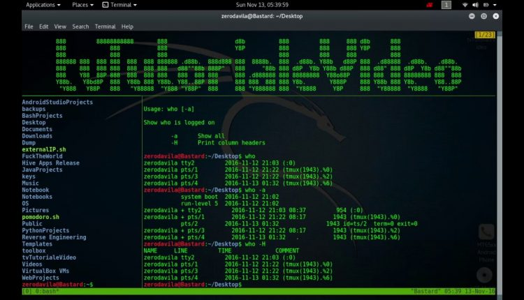 Tutoriale Video Busybox nr. 24 despre vi, watch,watchdog, we, wget, which, who