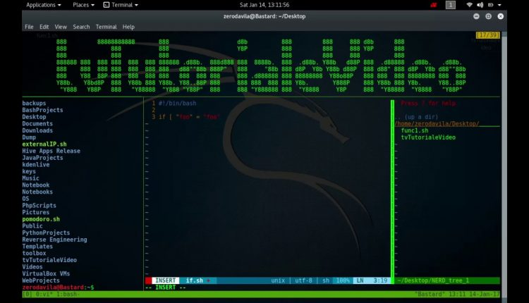 Introducerea in bash despre variabile locale – 02